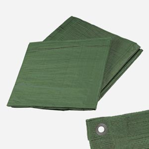 Krycí plachta 10x15m zelená 120g/m2 PROFI, Den Braven B9357FOL